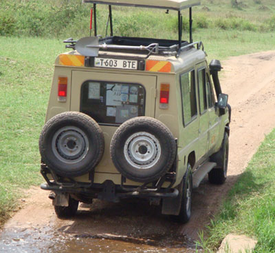 wildlife safari tour group