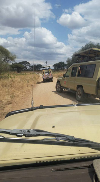 safari jeeps on tour