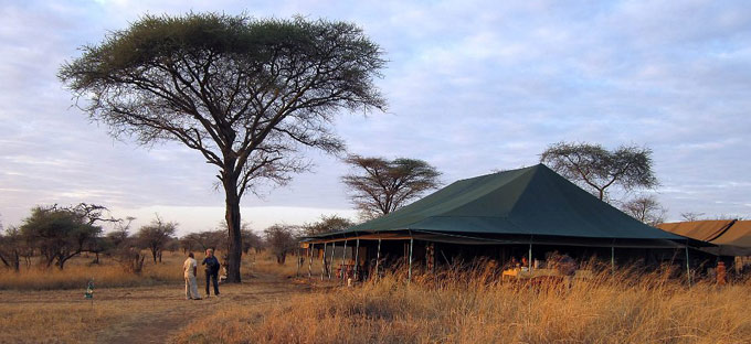 Serengeti camp